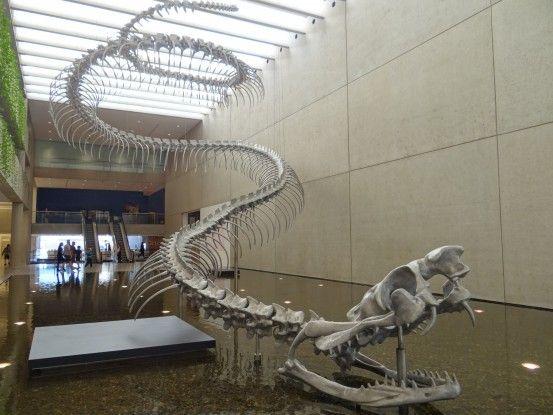 australie-brisbane-musee-voyage-travel-culture