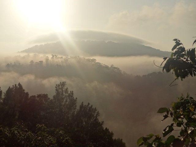 Australie- Queensland: Levé du soleil du coté de Kuranda.